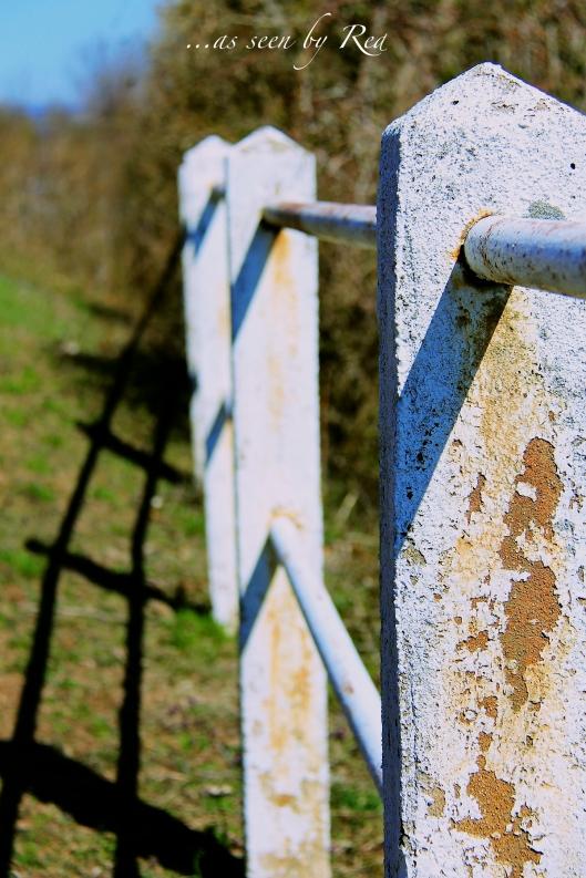 Stone Fenceline
